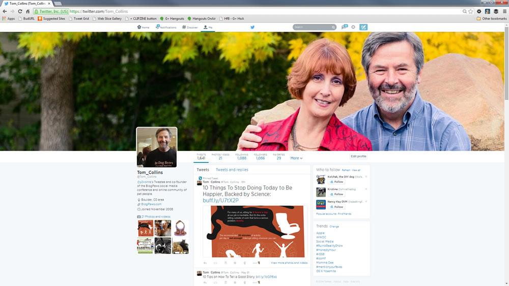 New Twitter Header - Tom Collins June 2014 - made in Canva; displayed on desktop