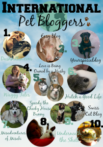 international-pet-bloggers