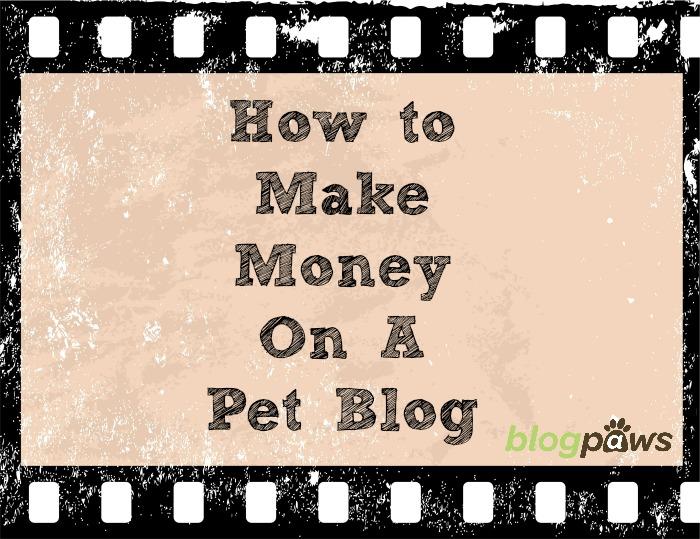 pet blog