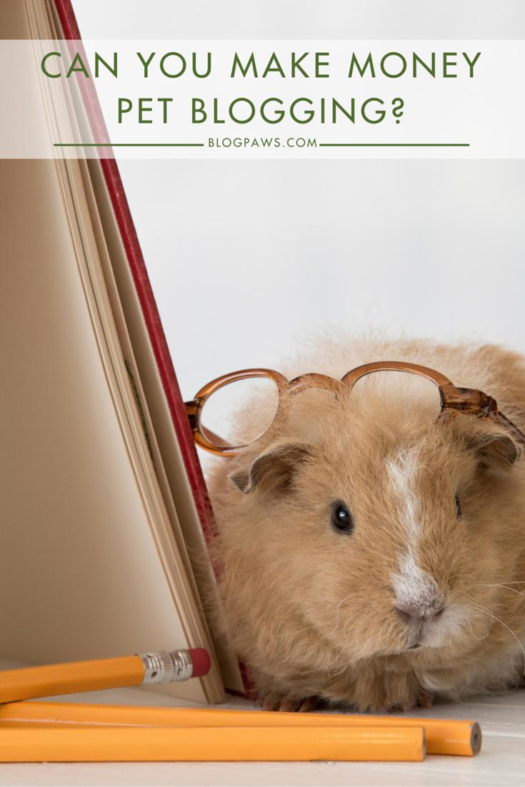 Can You Make Money Pet Blogging-