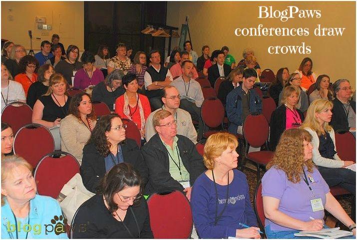 blogpawssession