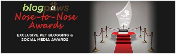 nose_to_nose_awards