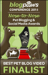BST-PET-BLOG-VIDEO-n2n2015-FINALISTbadge