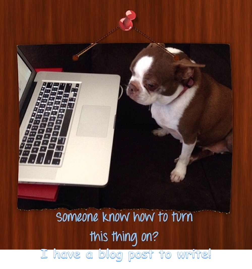Olive wants to write a blog post