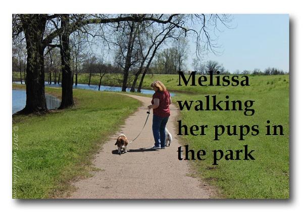 Walk at the park 700