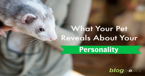 pet personality