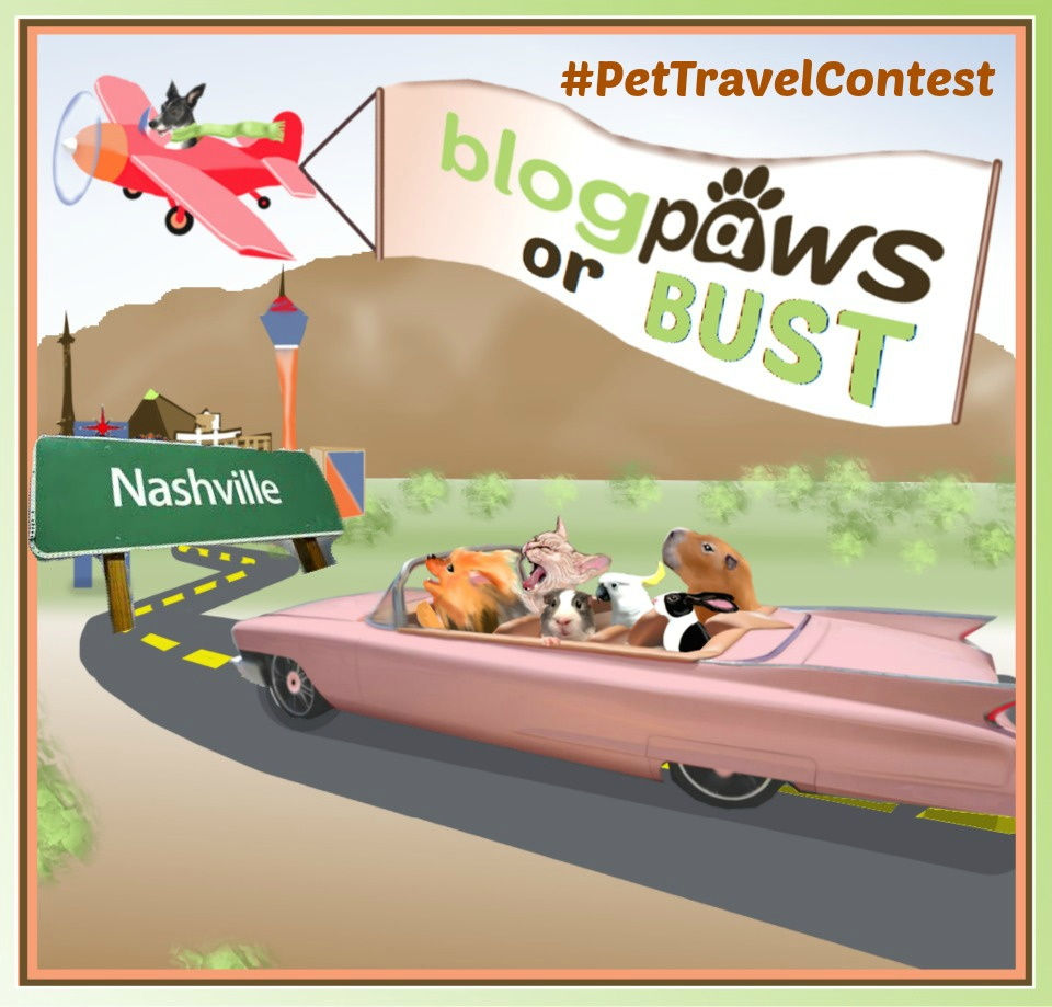 BlogPaws pet travel contest