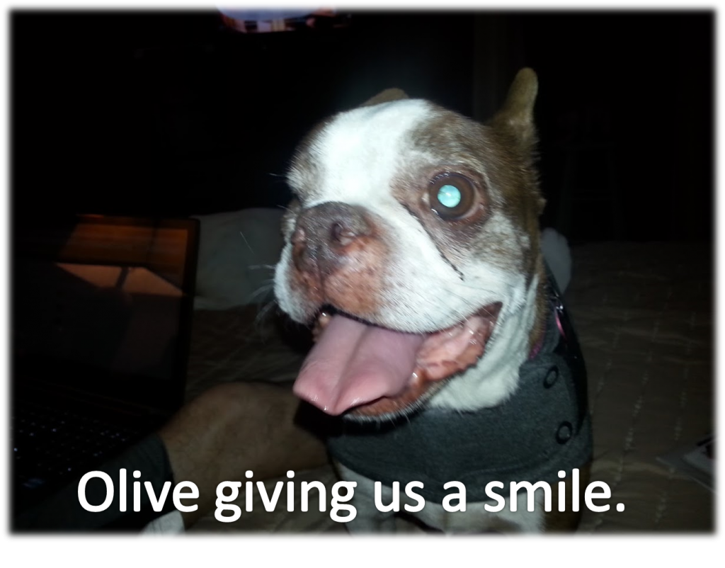 the question is not why the question is what  - is making Olive smile?