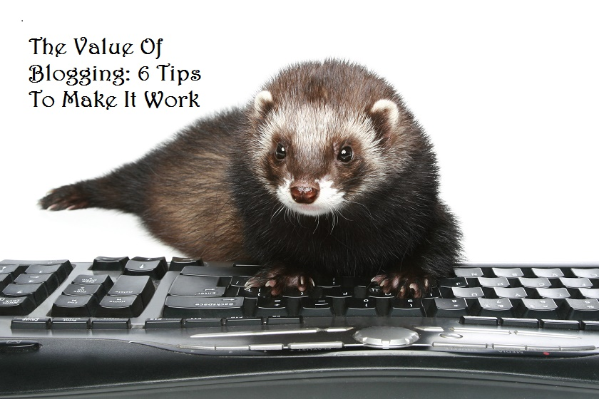 The value of blogging for pet business owners. Tips.