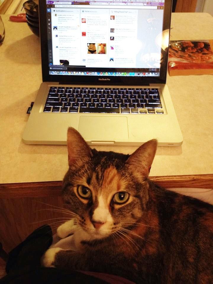 phoebe-laptop