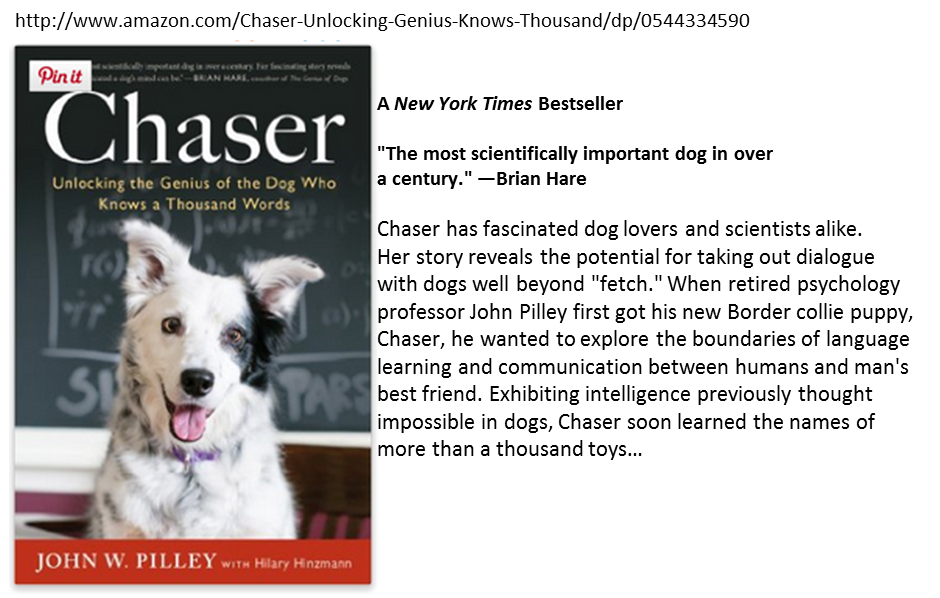 Intelligence in Dogs. Chaser the border collie.