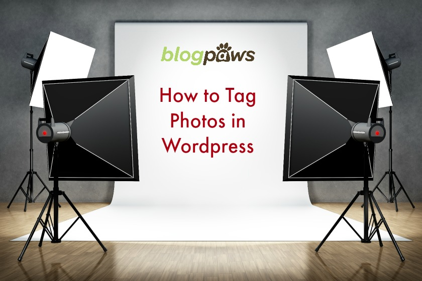 proper tagging in WordPress