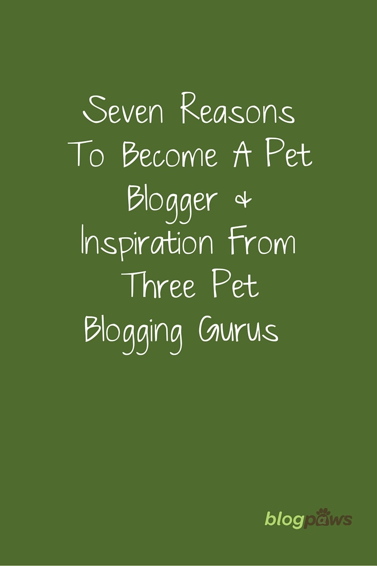 7 reasons to be a pet blogger