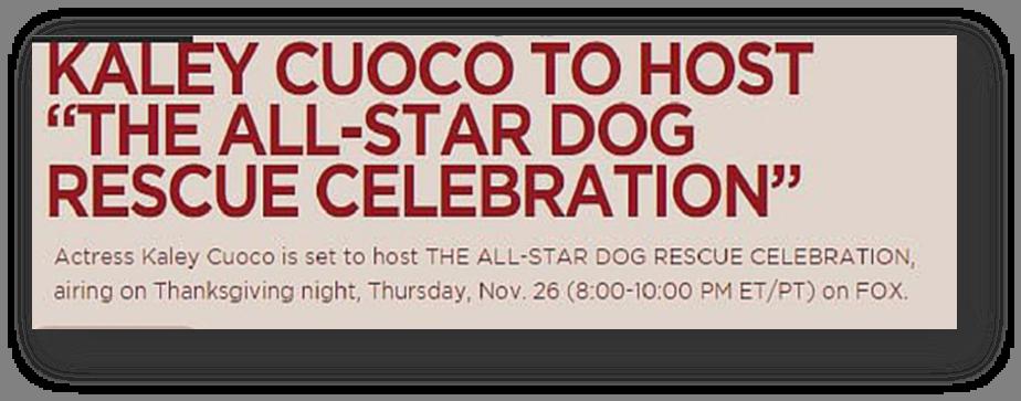 All Star Dog Rescue Kaley Cuoco