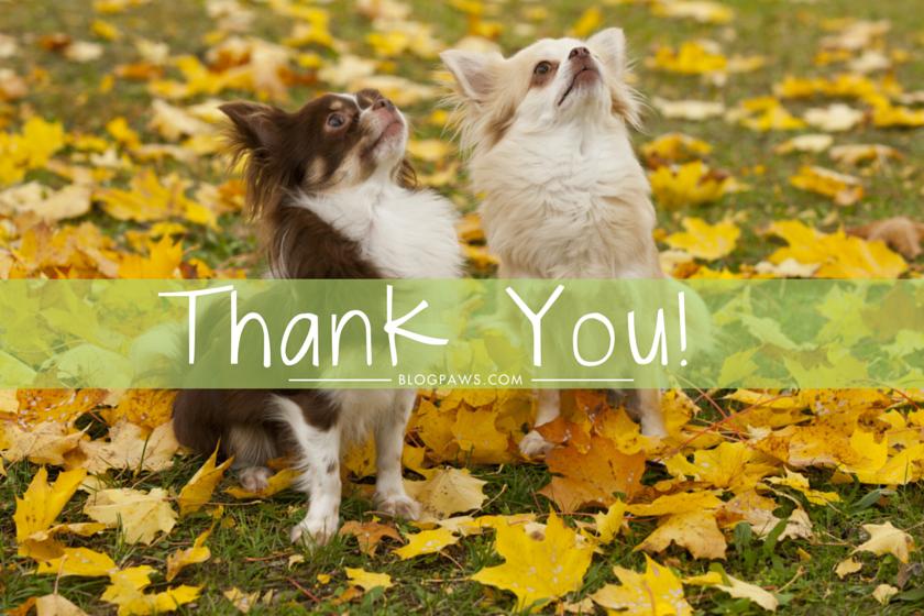 The BlogPaws Team Thanks You!