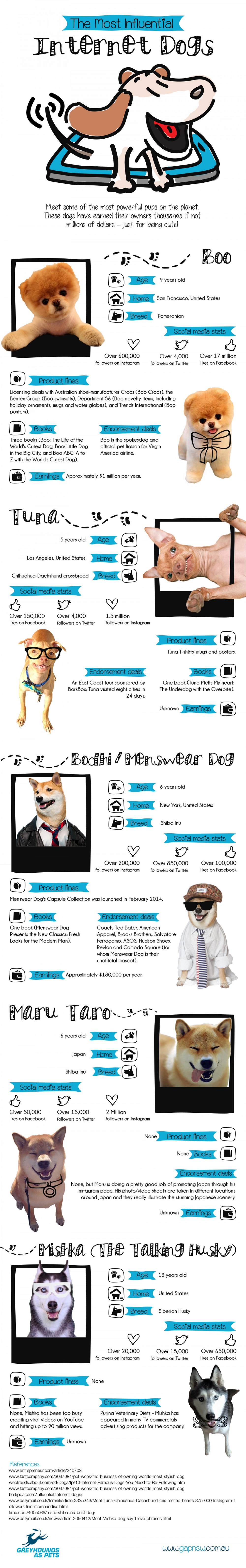 Most influential dogs on the internet