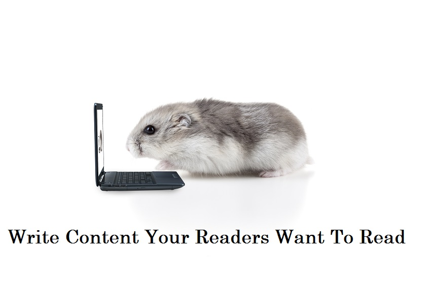 writing headlines hamster on laptop