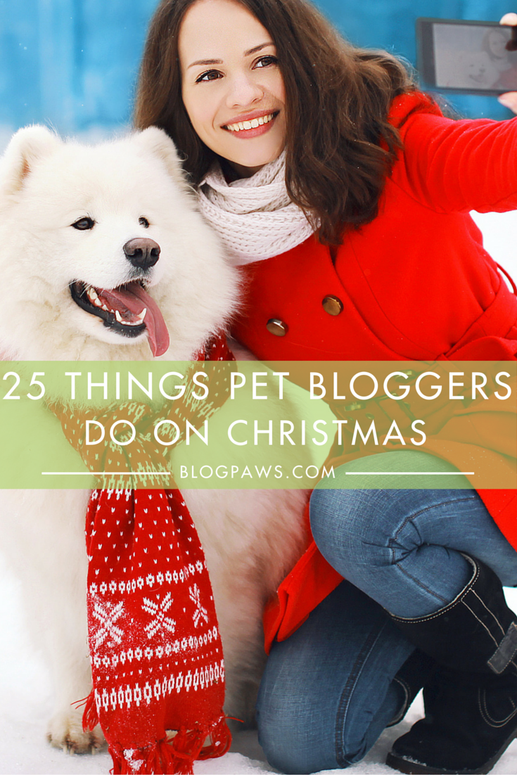 25 Things Pet Bloggers Do On Christmas from BlogPaws.com (1)