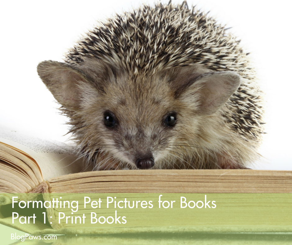 Formatting pictures for books part 1