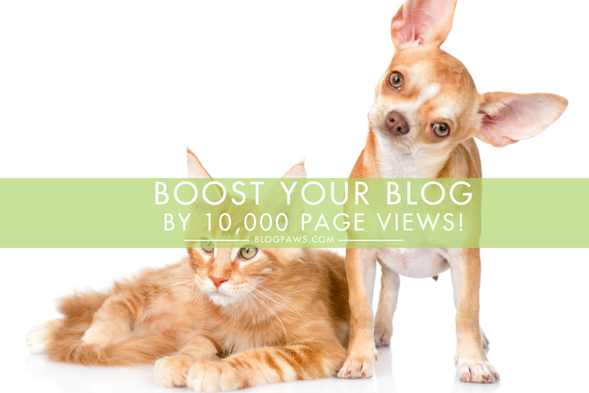 Hero_Boost Your Blog by 10,000 Page Views