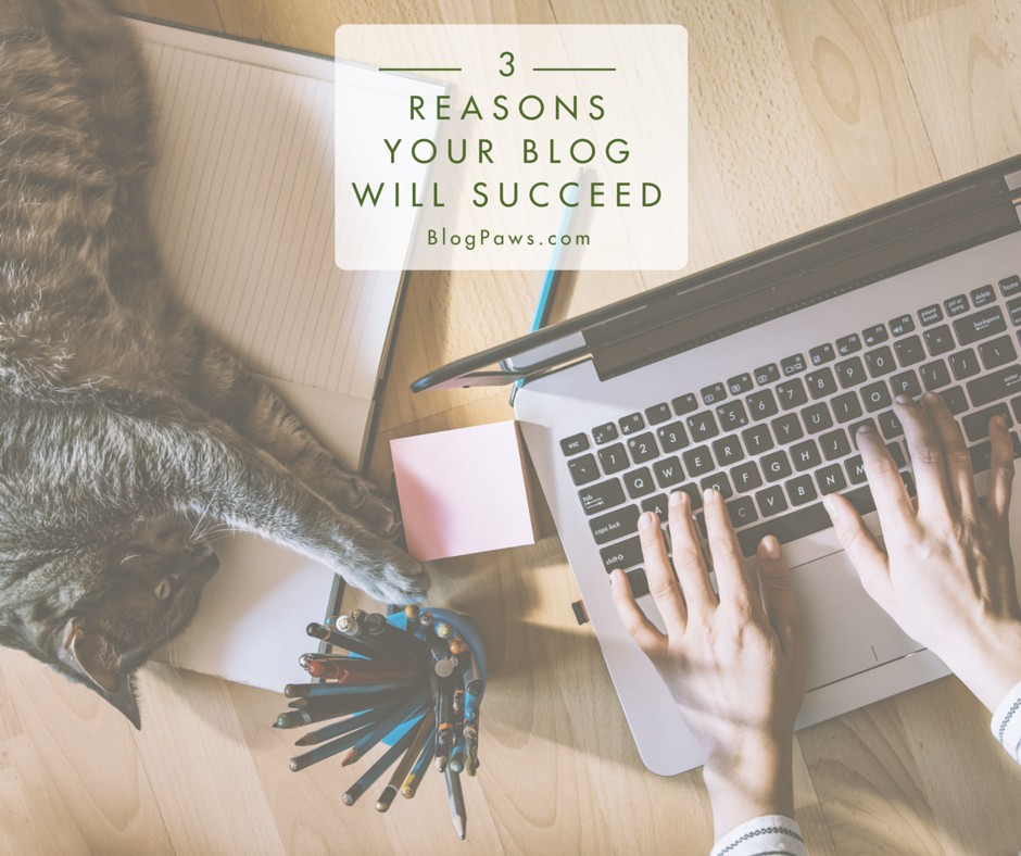 3 Reasons Your Blog Will Succeed FB