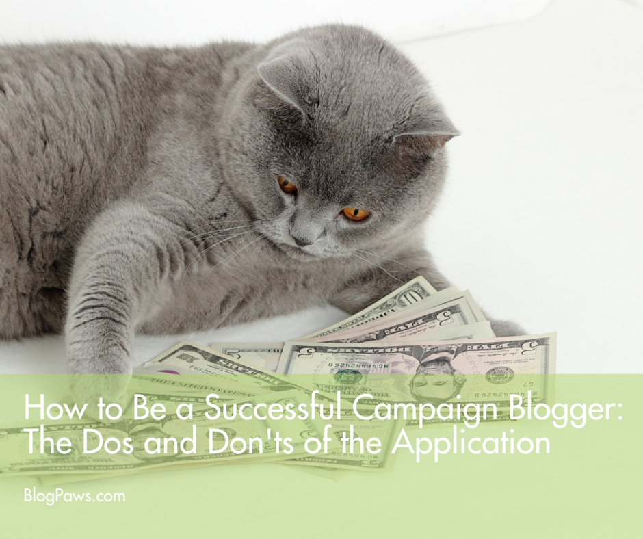 How to be a successful campaign blogger- The dos and don'ts of the application FACEBOOK