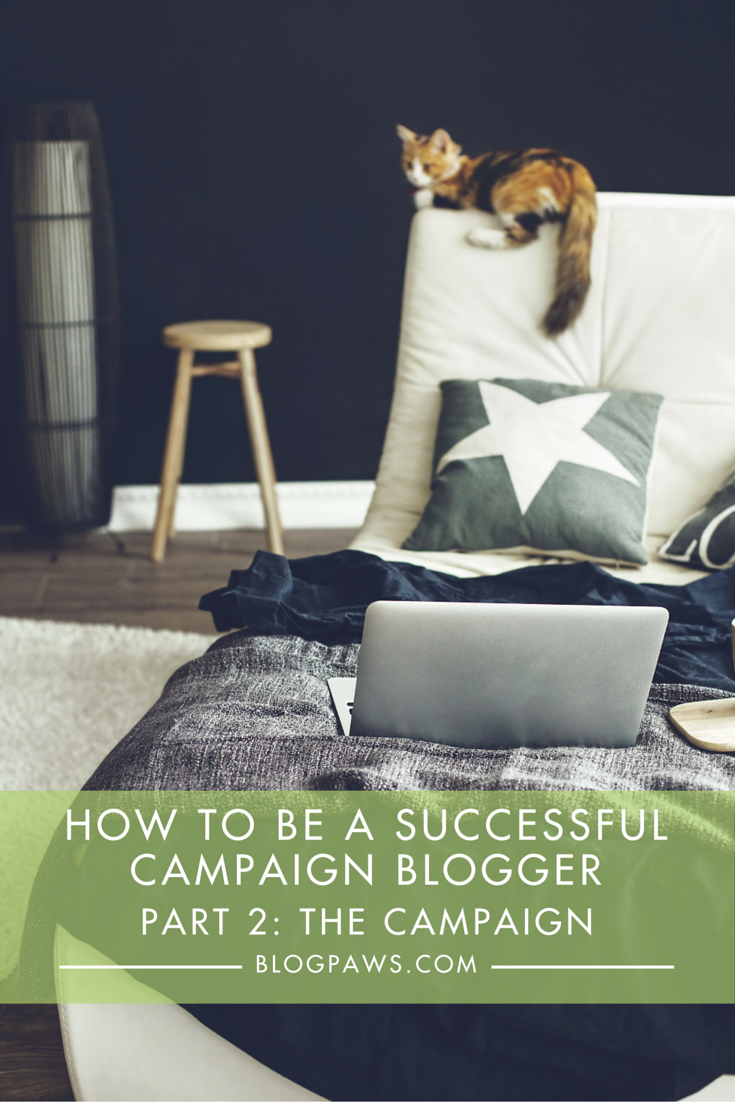 How to be a successful campaign blogger- Tips to impress brands