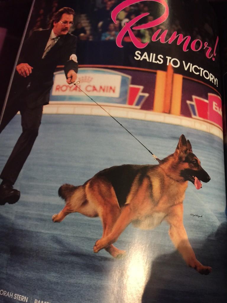 Canine Chronicle