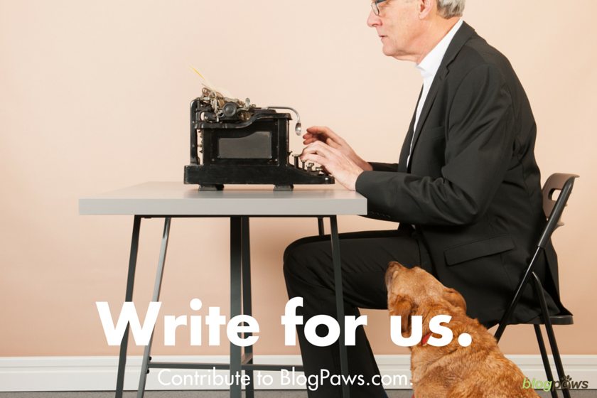 Write for Us: BlogPaws Contributor Guidelines