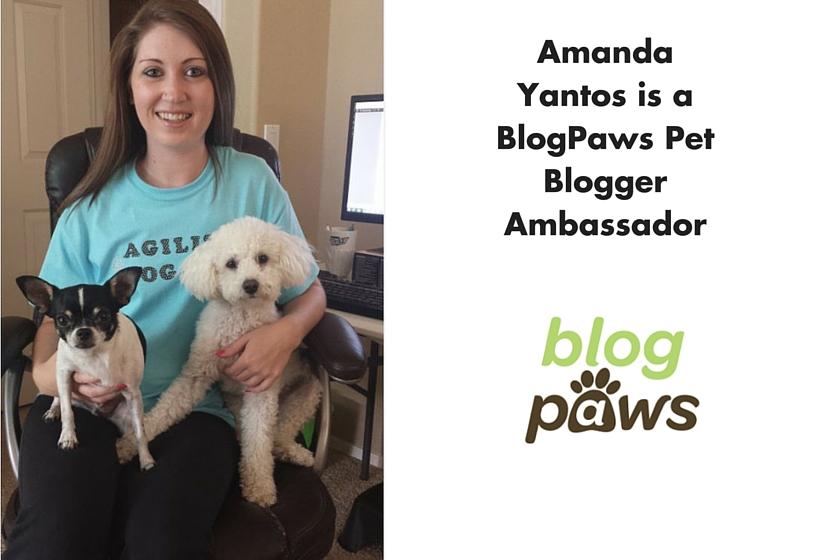 Amanda Yantos BlogPaws Ambasssador