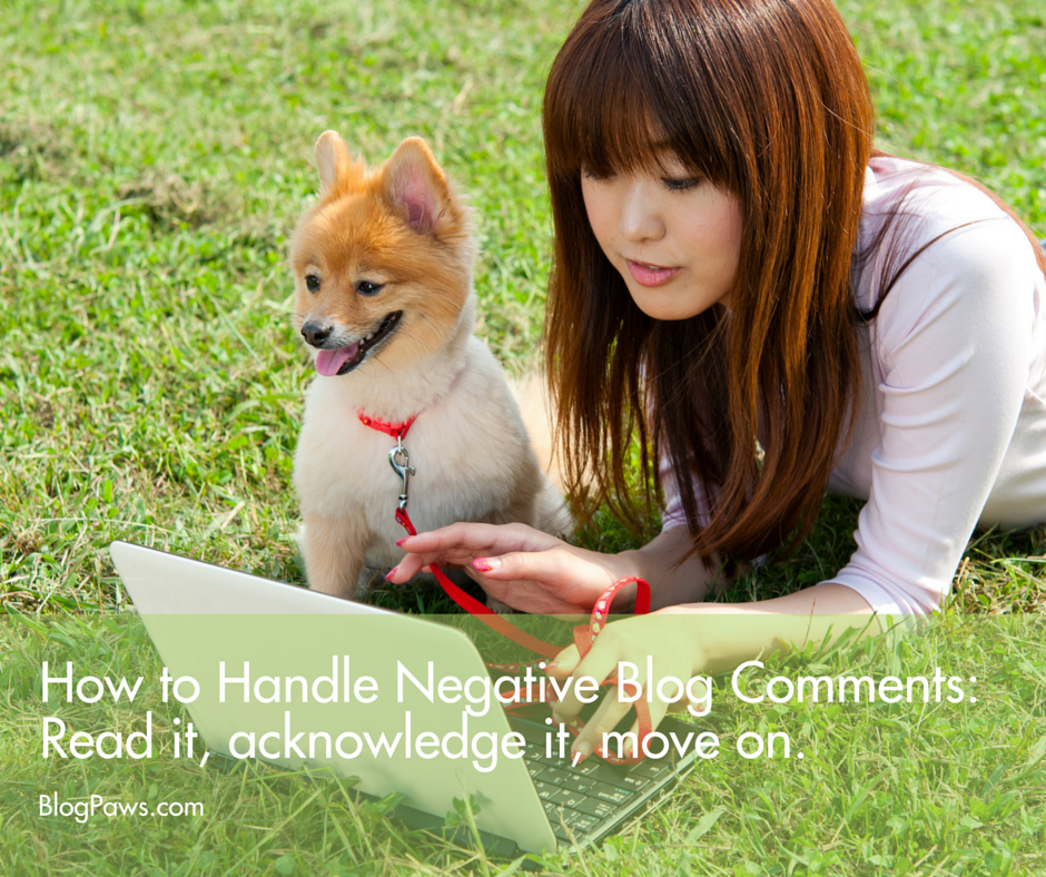 How to Handle Negative Blog Comments FB
