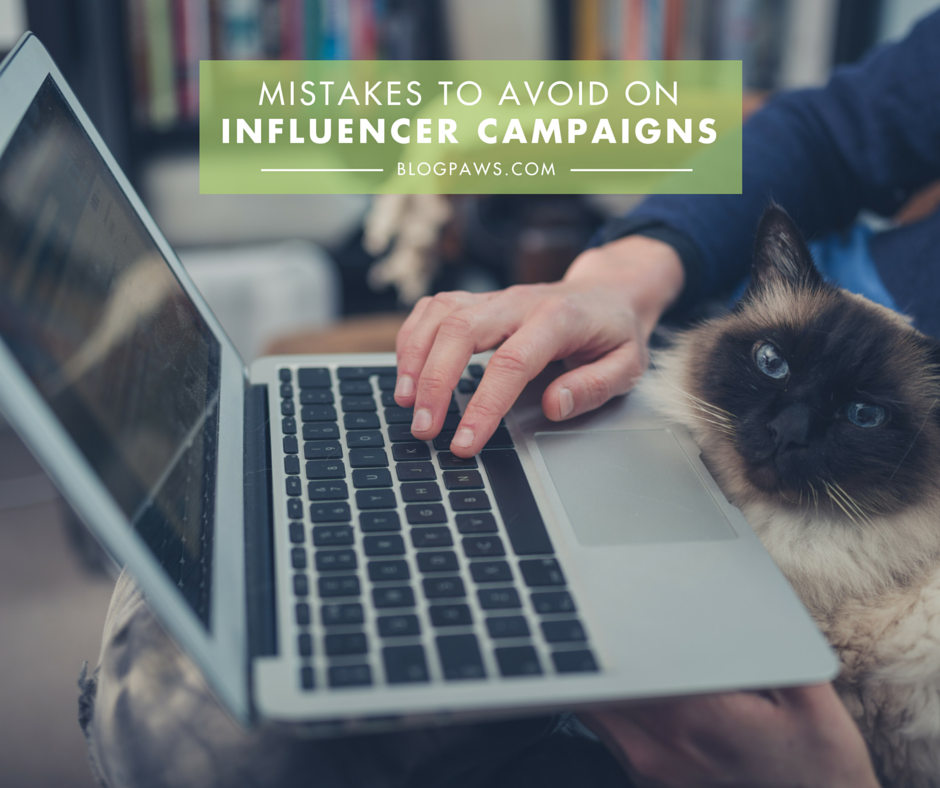 Not getting chosen for influencer campaigns- Here's why. FB