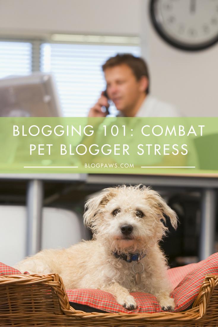 Combat pet blogging stress