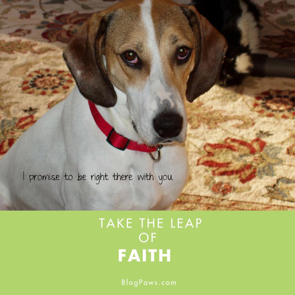 Take the Leap of Faith