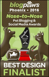 BEST DESIGN Nose-to-Nose 2016 - FINALIST badge