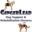 GingerLead - Dog Support & Rehabilitation Harness