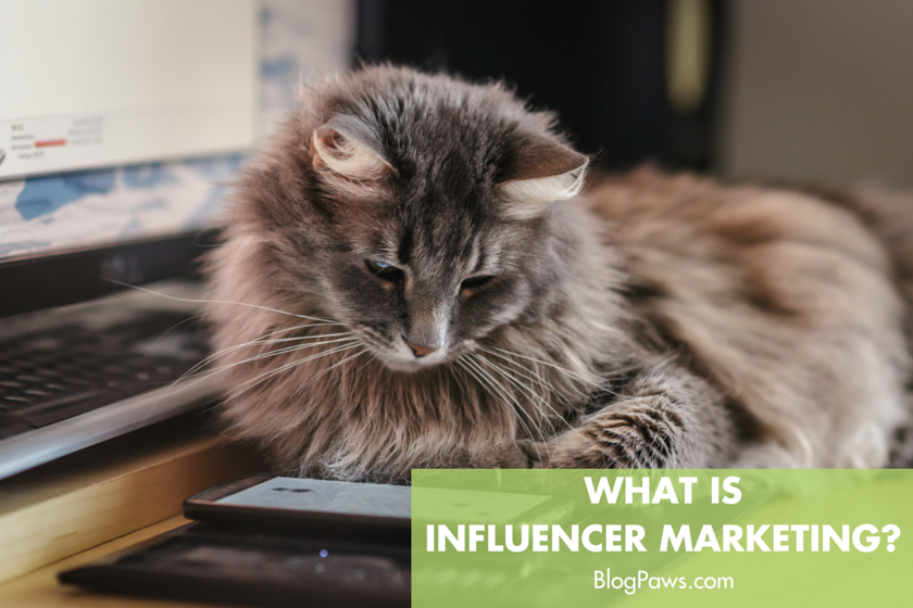 What is influencer marketing- (2)
