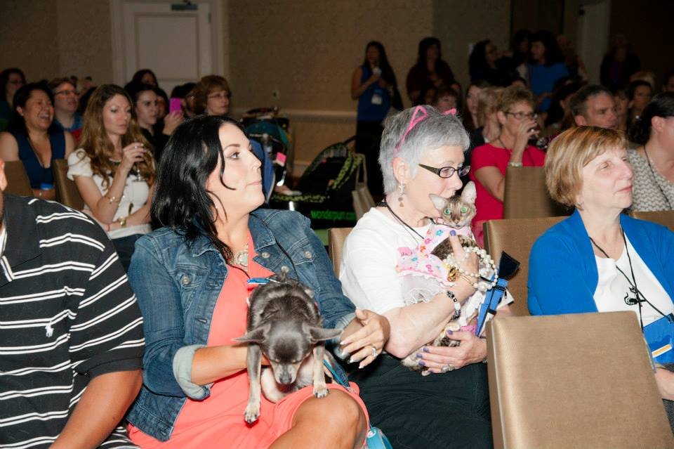 Attendees with pets