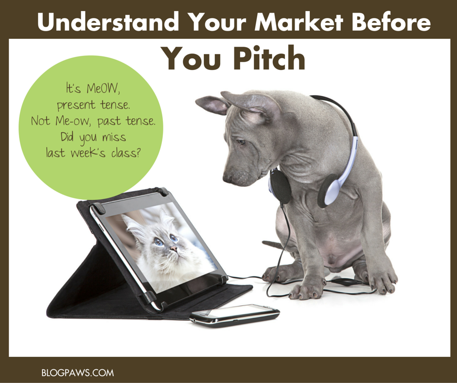 Know Your Market Before You Pitch