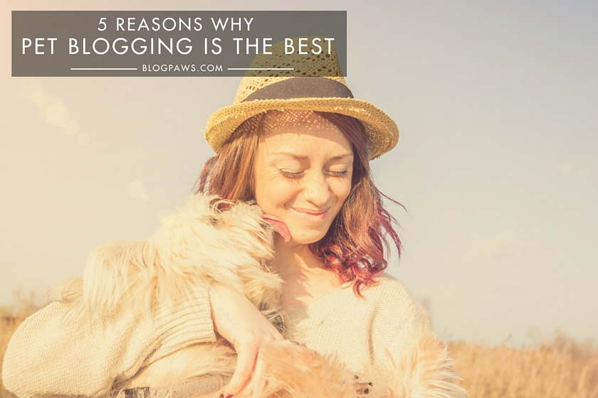 5 Reasons Why Being a Pet Blogger is the Best HERO