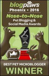 BlogPaws 2016 Nose-to-Nose Awards - Best Pet MicroBlogger Winner