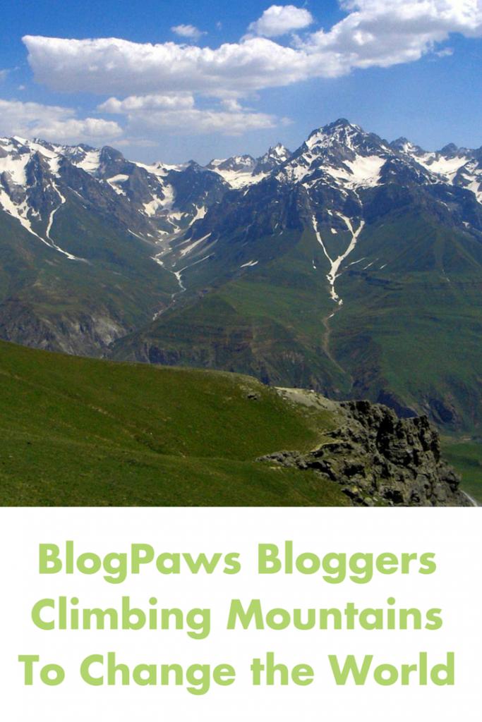 BlogPaws Bloggers Climbing Mountains