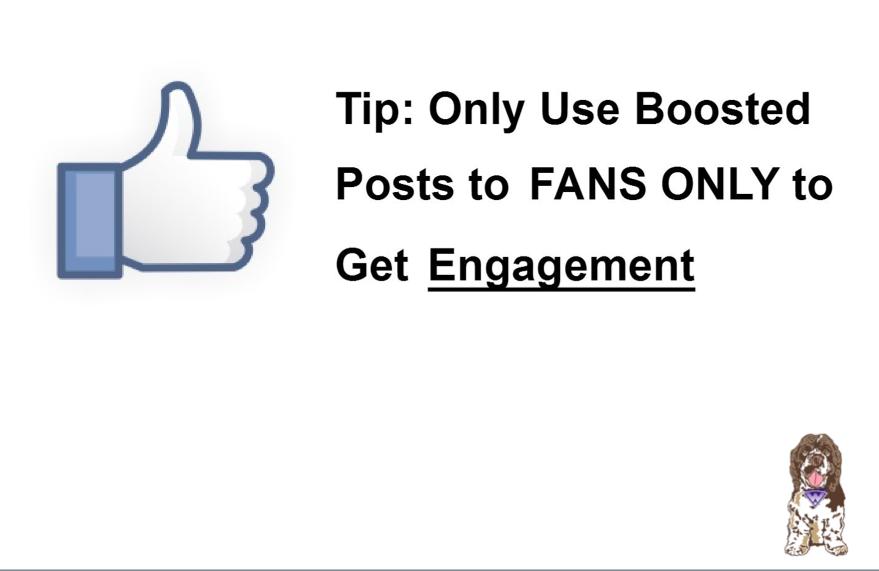 Facebook ad tip
