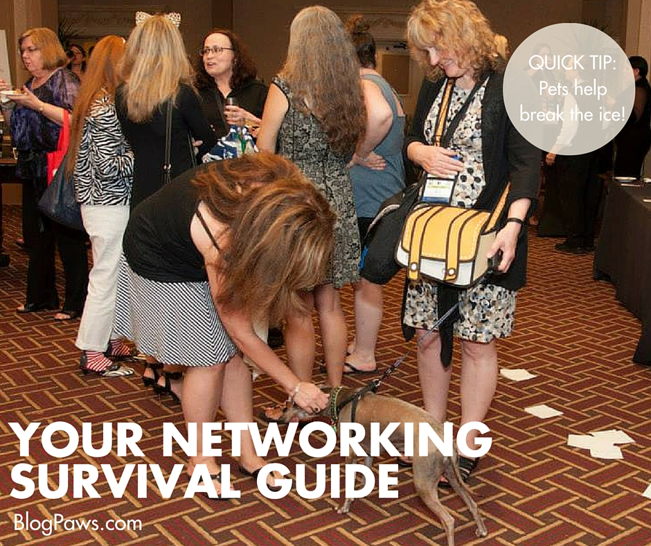Your networking survival guide