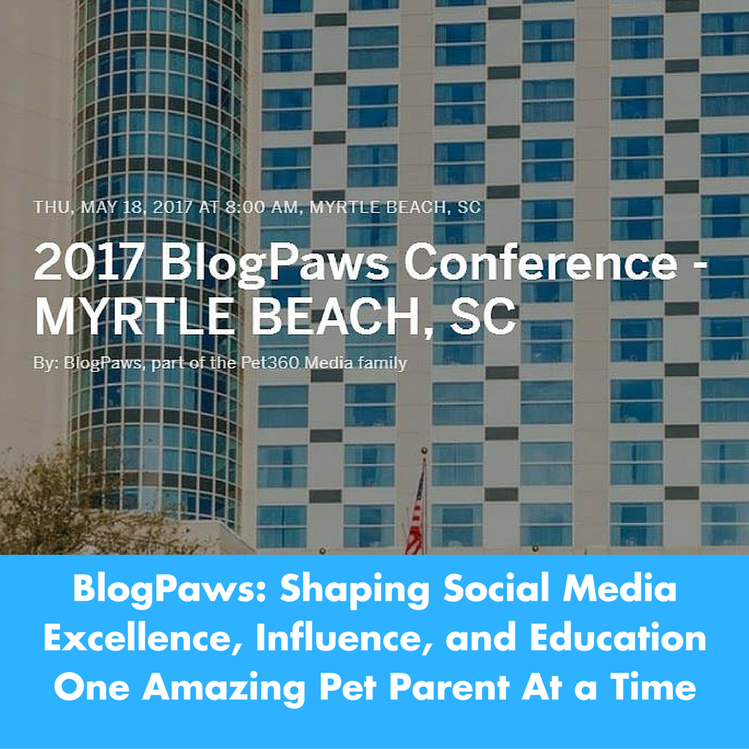 Shaping Social Media Excellence, Influence and Education One Amazing Pet Parent At a Time