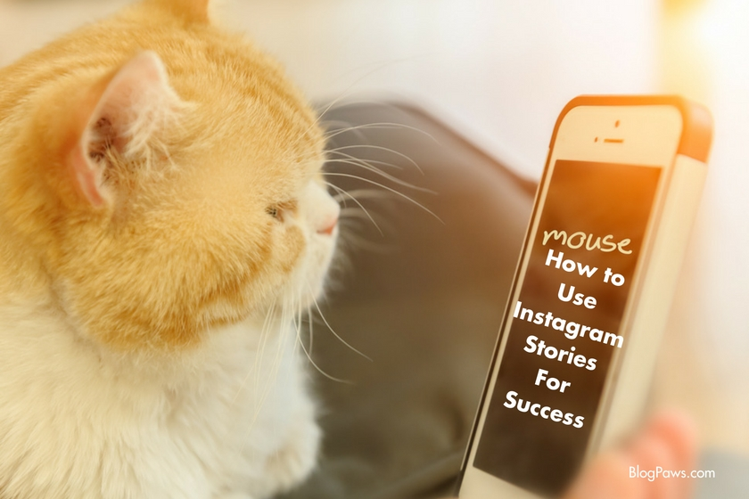 How to use Instagram Stories for Blogger Success