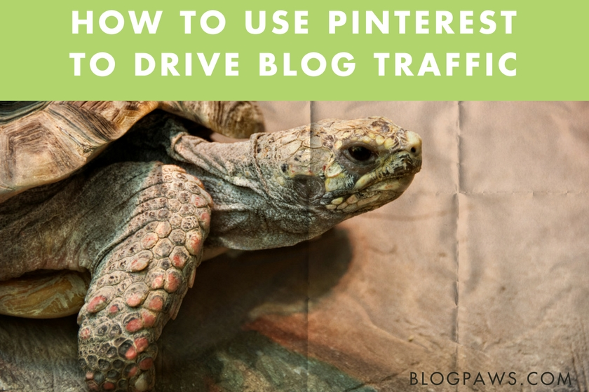 How to grow a blog using Pinterest