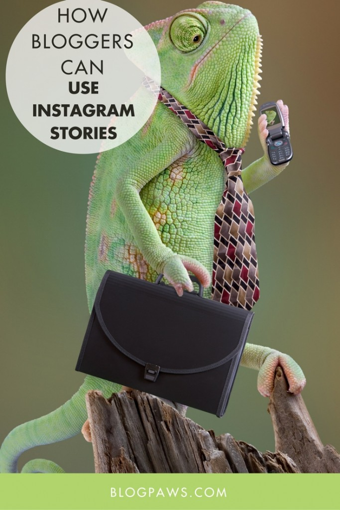 How Bloggers Can Use Instagram Stories For Success