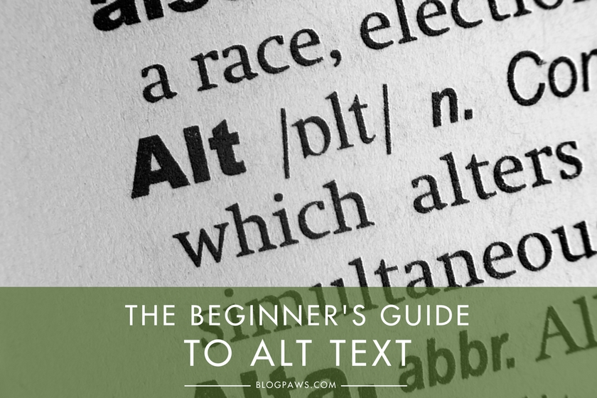 The Beginner's Guide to Alt Text