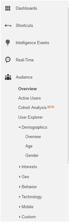 Know your blog's demographics by looking at Google Analytics